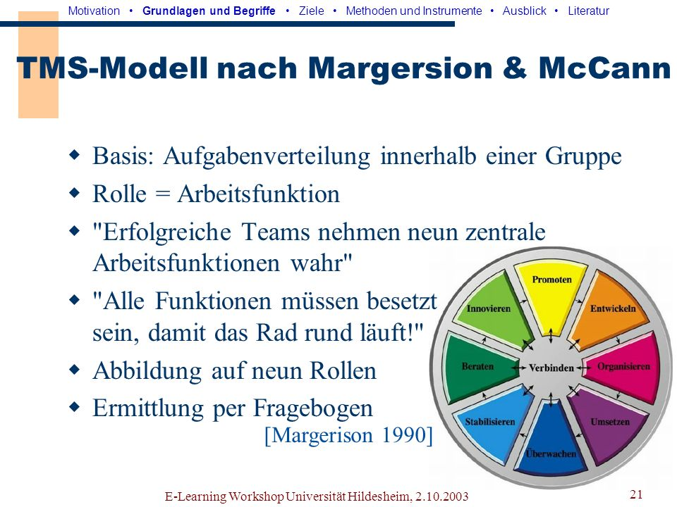 TMS-Modell nach Margersion & McCann