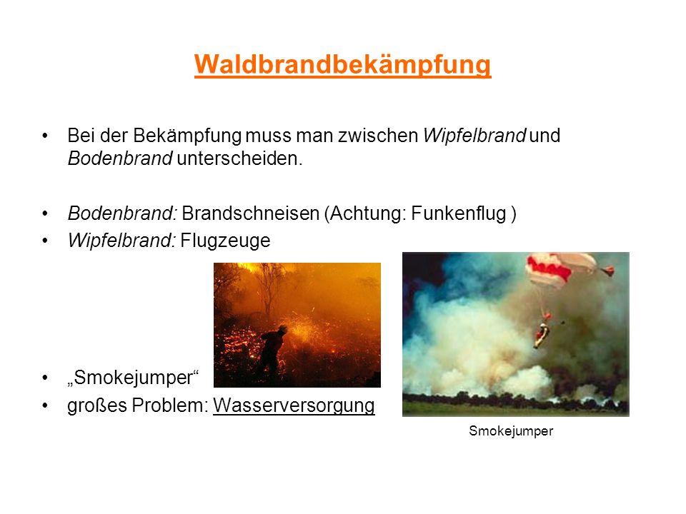 Waldbrandbekämpfung Bei der Bekämpfung muss man zwischen Wipfelbrand und Bodenbrand unterscheiden. Bodenbrand: Brandschneisen (Achtung: Funkenflug )