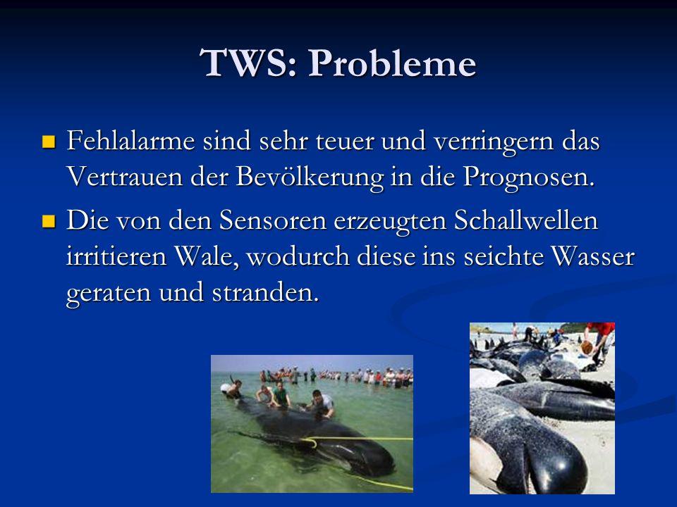 TWS: Probleme Fehlalarme sind sehr teuer und verringern das Vertrauen der Bevölkerung in die Prognosen.