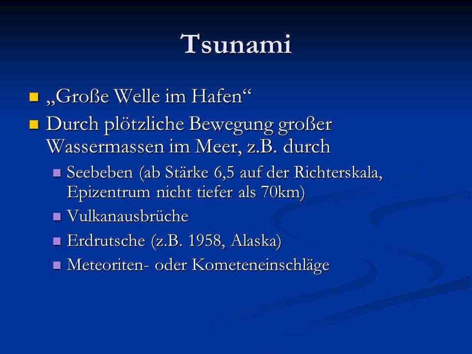 """Tsunami """"Große Welle im Hafen"""