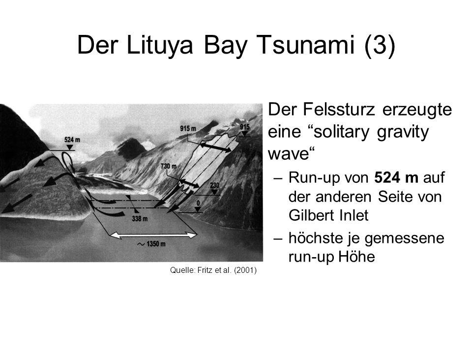 Der Lituya Bay Tsunami (3)