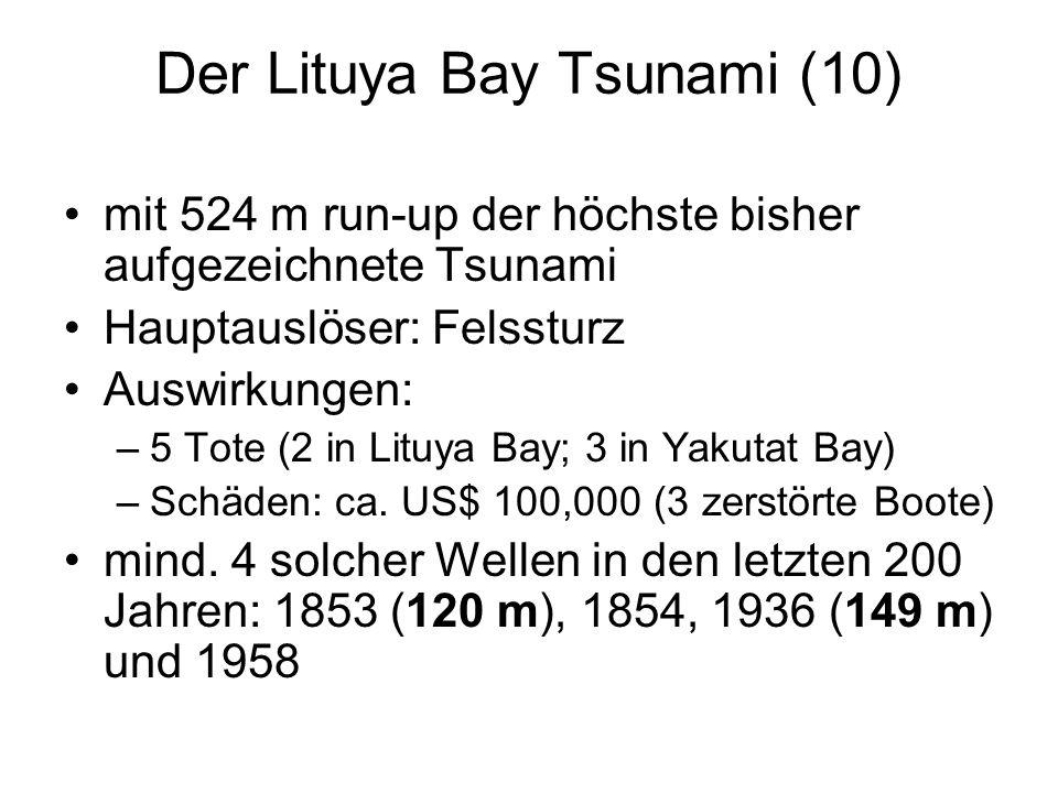 Der Lituya Bay Tsunami (10)