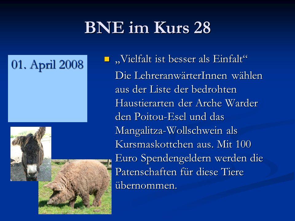 """BNE im Kurs 28 01. April 2008 """"Vielfalt ist besser als Einfalt"""