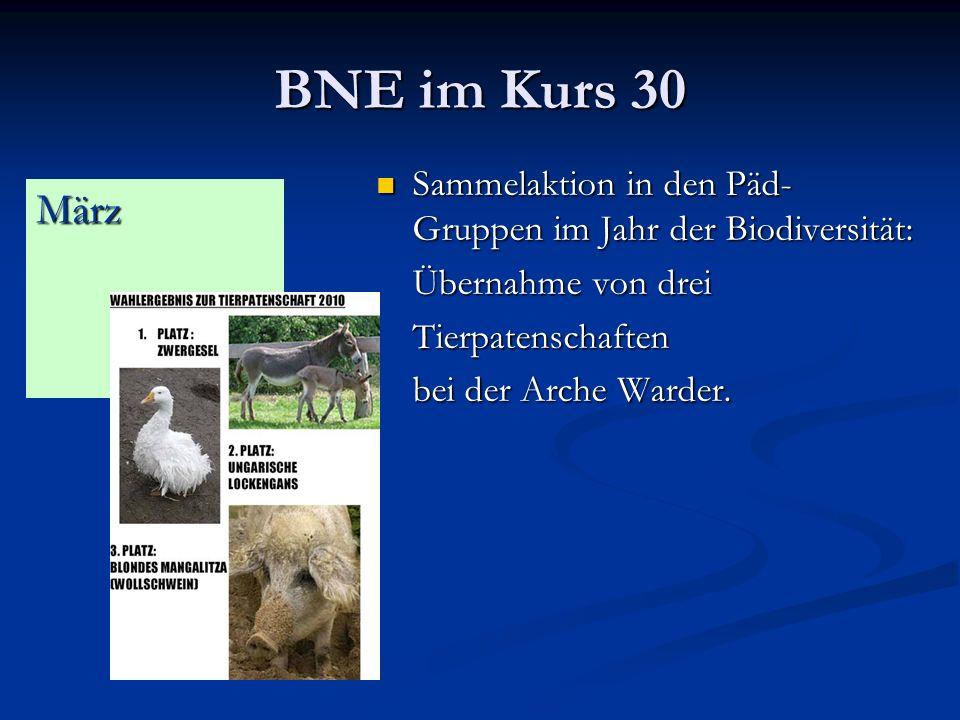 BNE im Kurs 30 Sammelaktion in den Päd-Gruppen im Jahr der Biodiversität: Übernahme von drei. Tierpatenschaften.