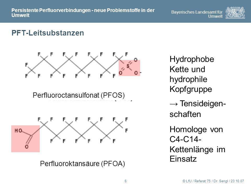 Hydrophobe Kette und hydrophile Kopfgruppe