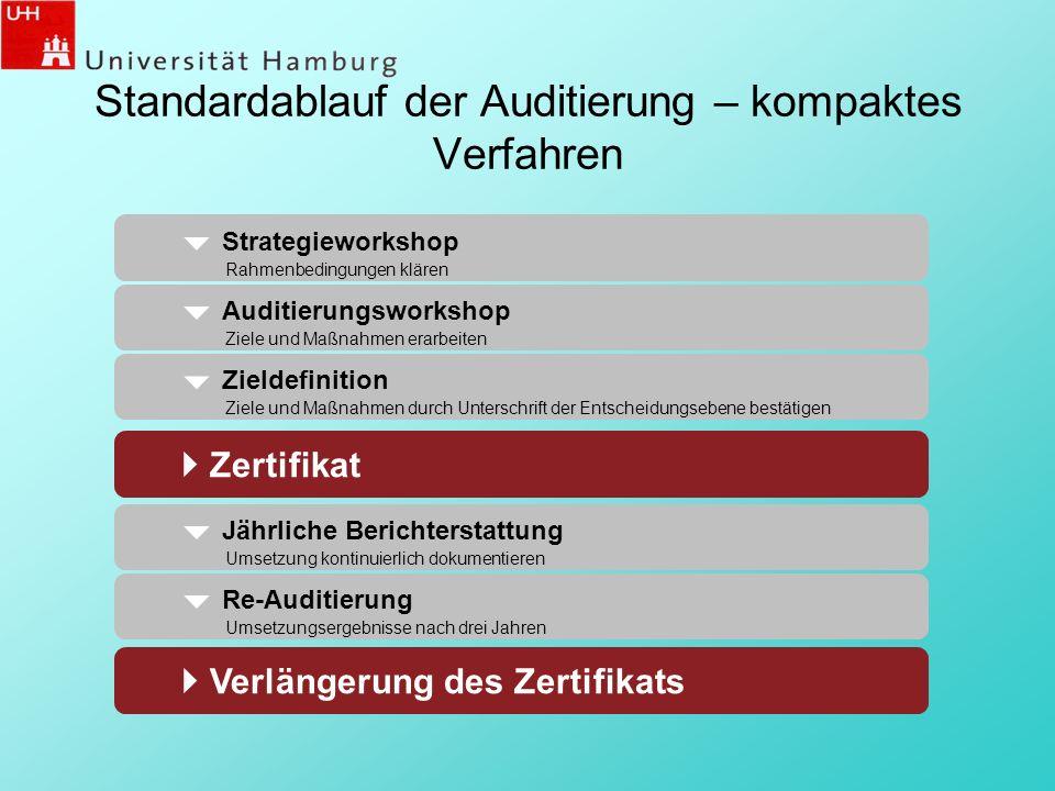 Standardablauf der Auditierung – kompaktes Verfahren