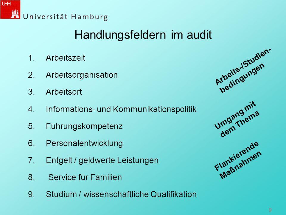 Handlungsfeldern im audit