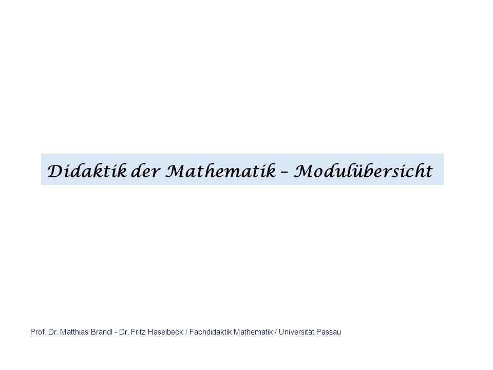 Didaktik der Mathematik – Modulübersicht