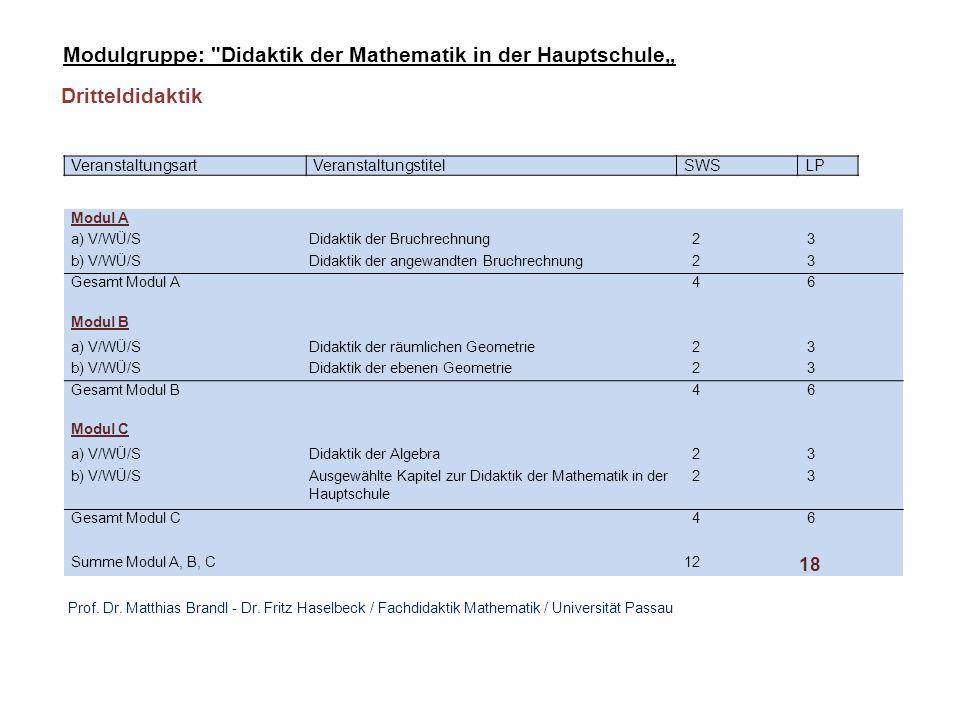 """Modulgruppe: Didaktik der Mathematik in der Hauptschule"""""""