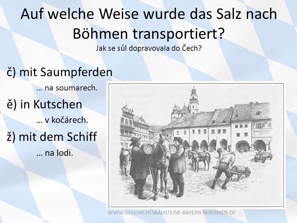 Auf welche Weise wurde das Salz nach Böhmen transportiert