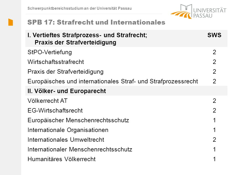 SPB 17: Strafrecht und Internationales
