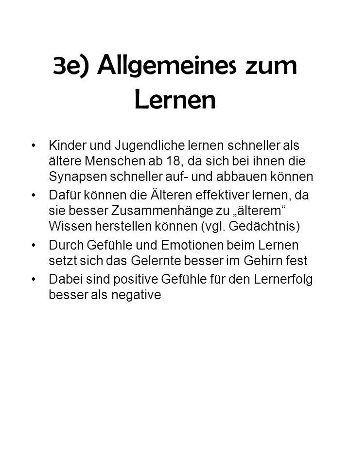 3e) Allgemeines zum Lernen