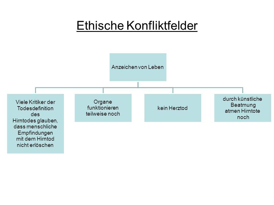 Ethische Konfliktfelder