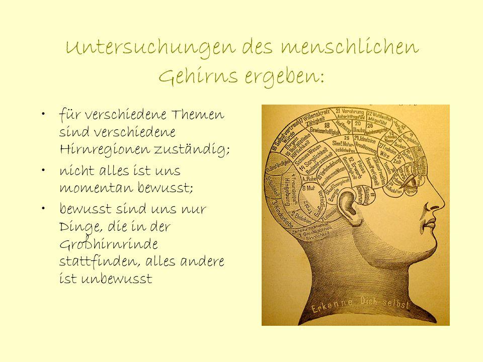 Untersuchungen des menschlichen Gehirns ergeben: