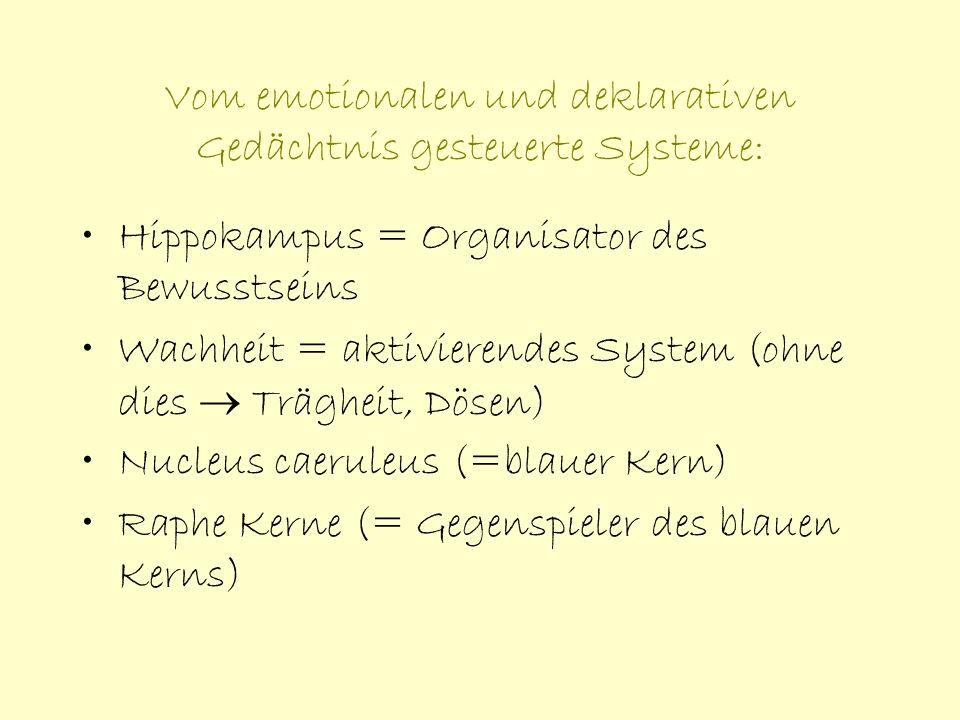 Vom emotionalen und deklarativen Gedächtnis gesteuerte Systeme: