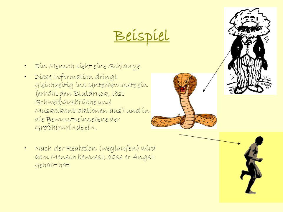 Beispiel Ein Mensch sieht eine Schlange.