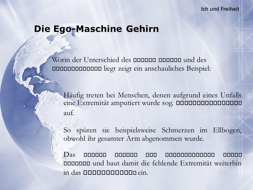 Die Ego-Maschine Gehirn