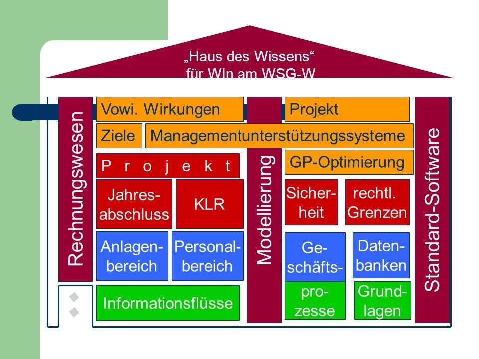 Rechnungswesen Standard-Software Modellierung Vowi. Wirkungen Projekt