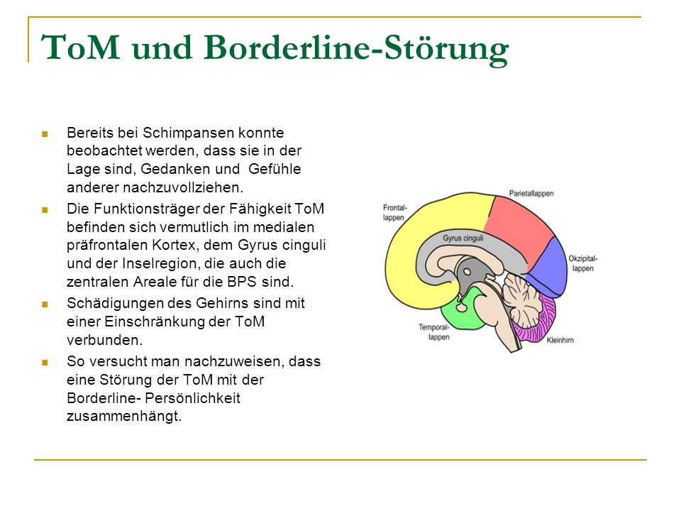 ToM und Borderline-Störung