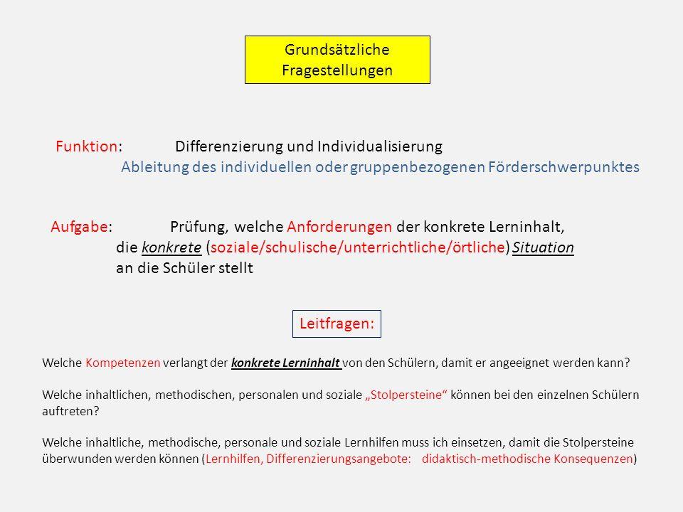 Funktion: Differenzierung und Individualisierung