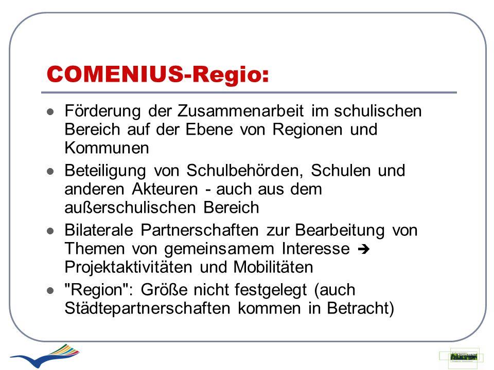 COMENIUS-Regio: Förderung der Zusammenarbeit im schulischen Bereich auf der Ebene von Regionen und Kommunen.
