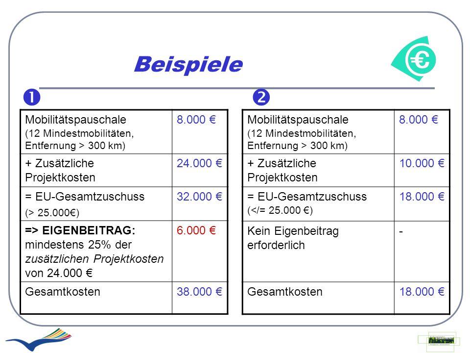 Beispiele   Mobilitätspauschale (12 Mindestmobilitäten, Entfernung > 300 km) 8.000 € + Zusätzliche Projektkosten.