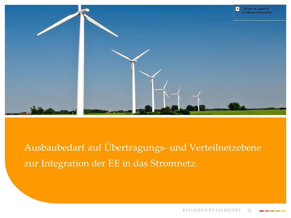 Ausbaubedarf auf Übertragungs- und Verteilnetzebene zur Integration der EE in das Stromnetz.