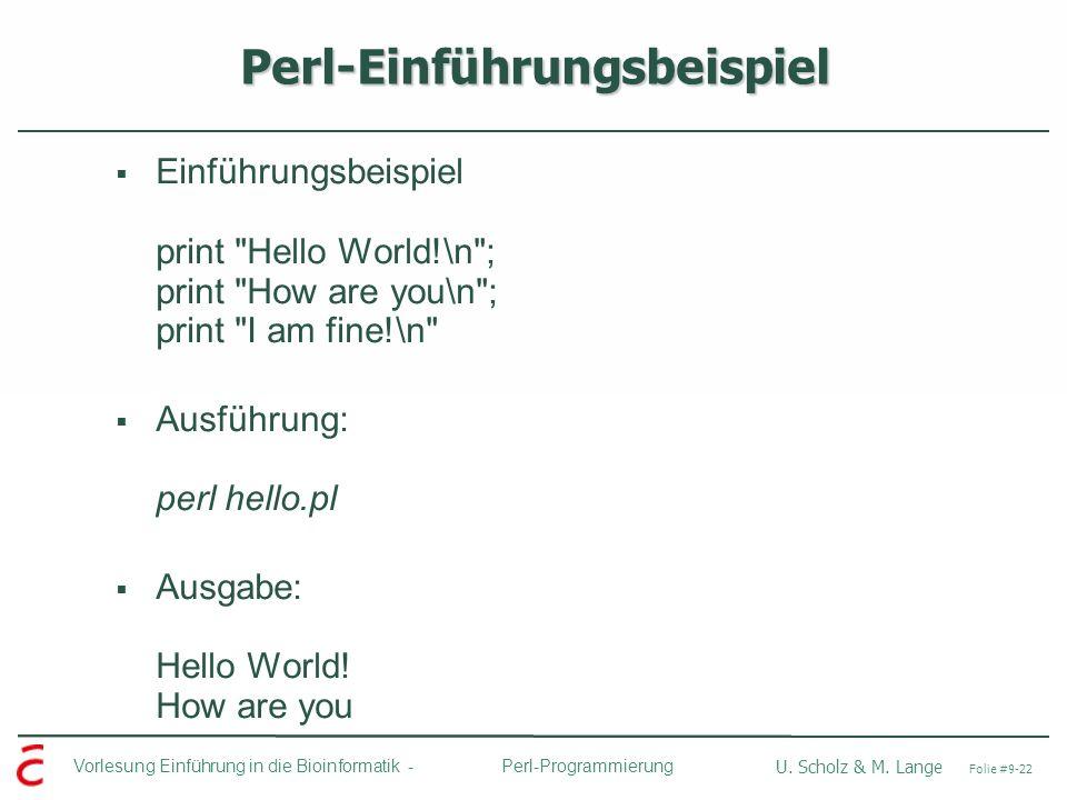 Perl-Einführungsbeispiel