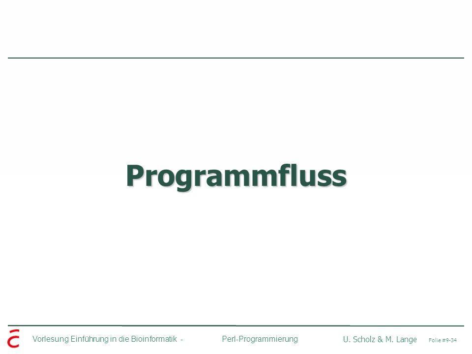 Programmfluss