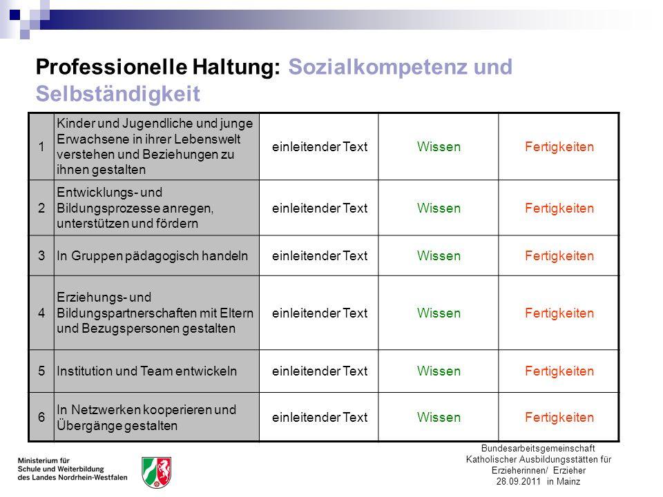Professionelle Haltung: Sozialkompetenz und Selbständigkeit