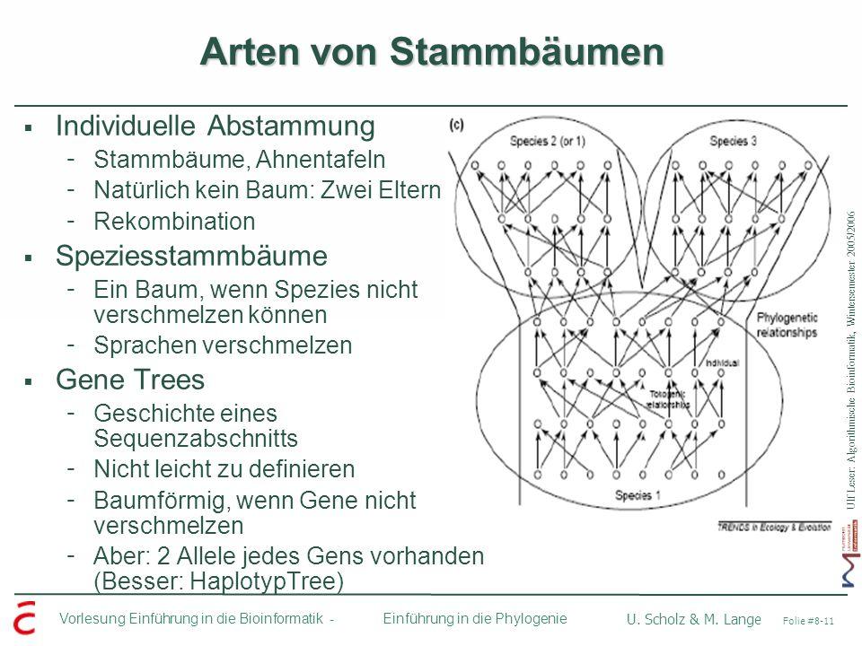 Arten von Stammbäumen Individuelle Abstammung Speziesstammbäume
