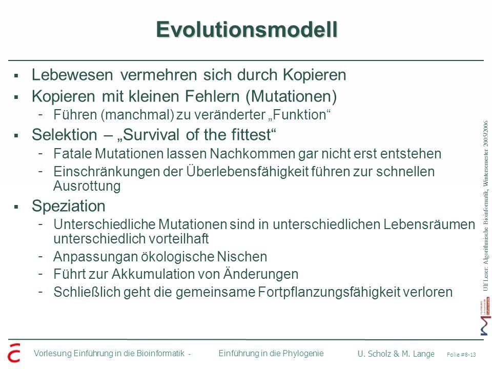 Evolutionsmodell Lebewesen vermehren sich durch Kopieren
