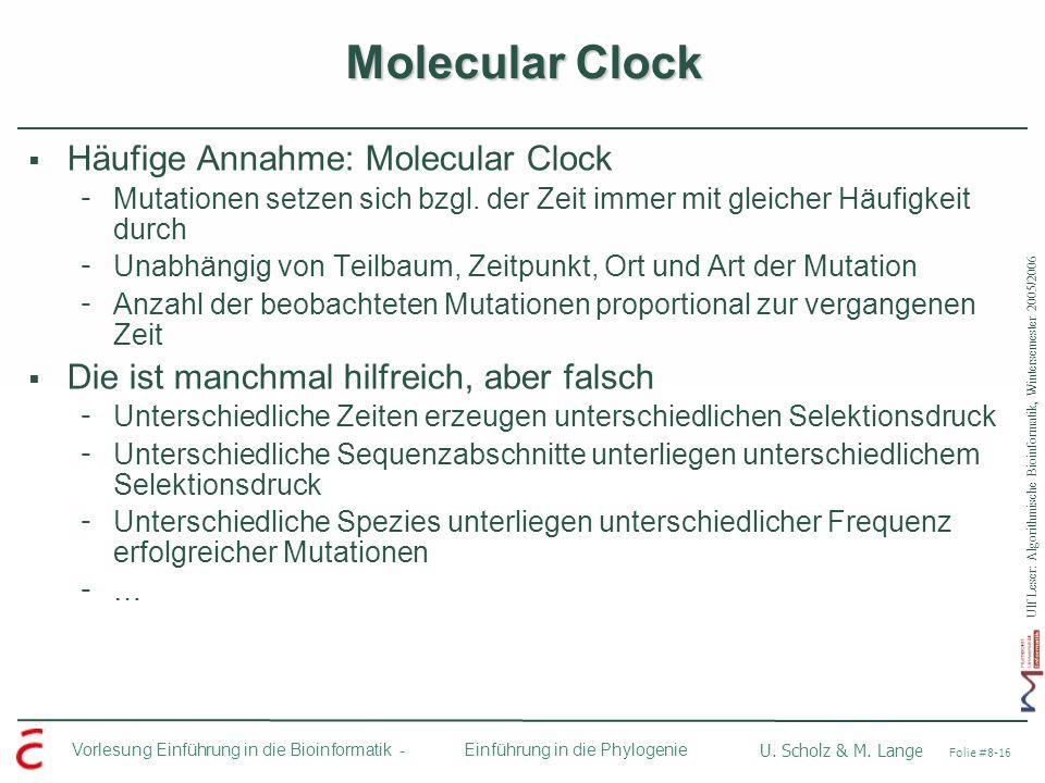 Molecular Clock Häufige Annahme: Molecular Clock