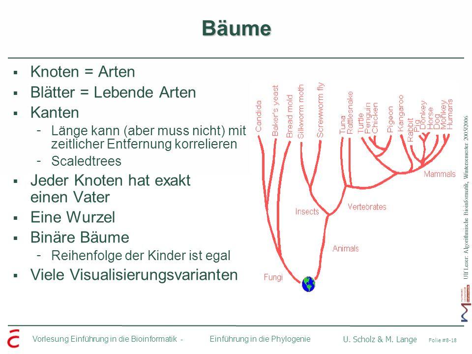 Bäume Knoten = Arten Blätter = Lebende Arten Kanten