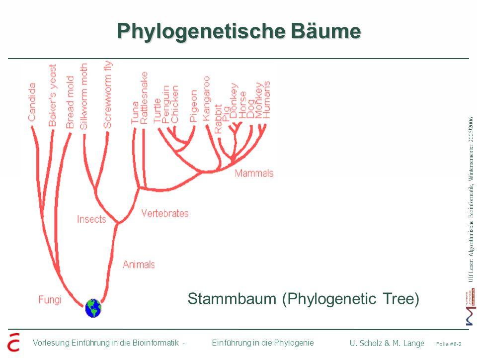 Phylogenetische Bäume