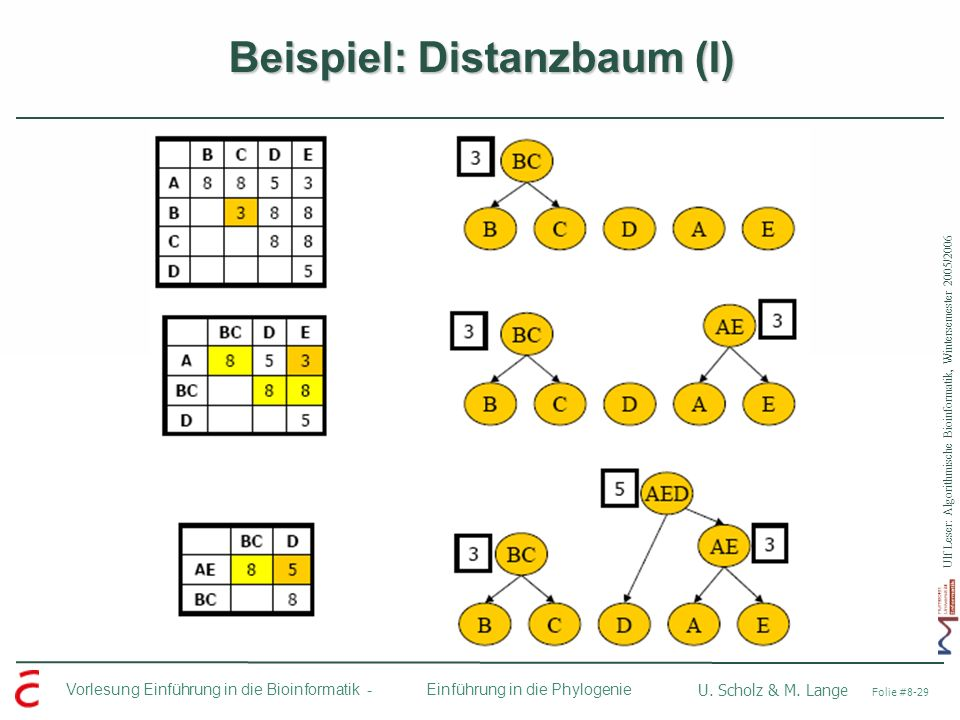 Beispiel: Distanzbaum (I)