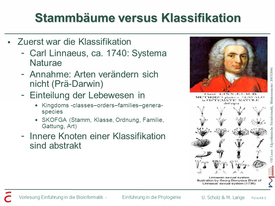 Stammbäume versus Klassifikation
