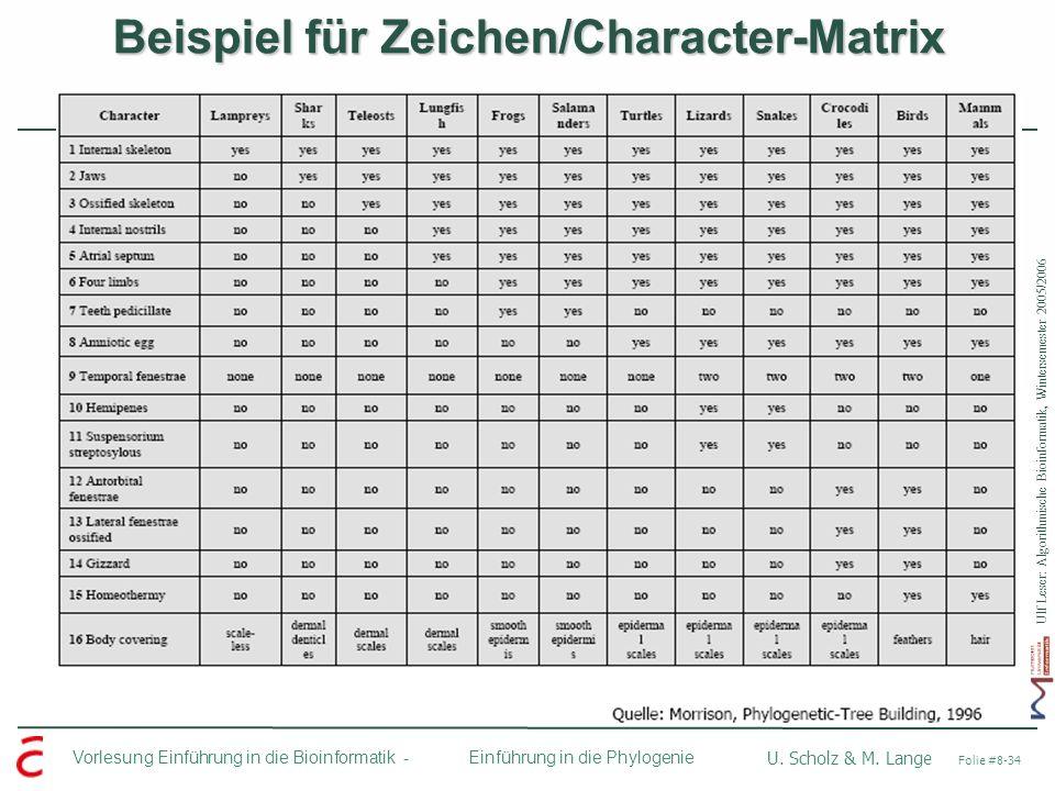 Beispiel für Zeichen/Character-Matrix