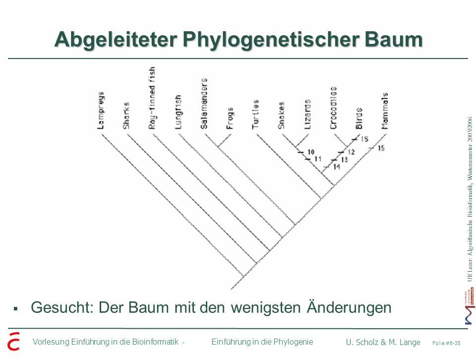 Abgeleiteter Phylogenetischer Baum