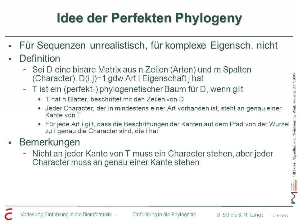 Idee der Perfekten Phylogeny