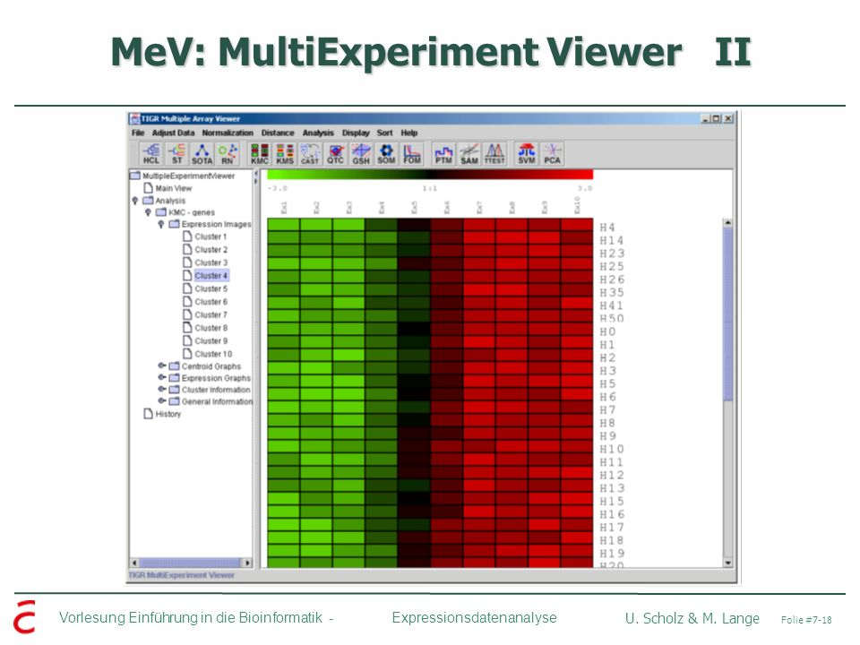 MeV: MultiExperiment Viewer II