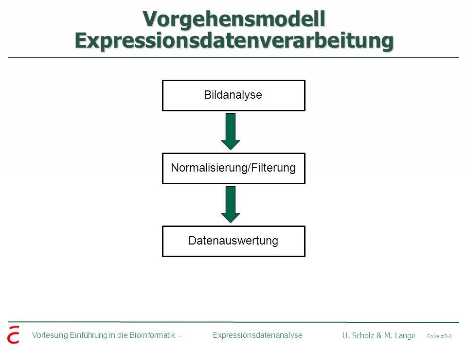 Vorgehensmodell Expressionsdatenverarbeitung