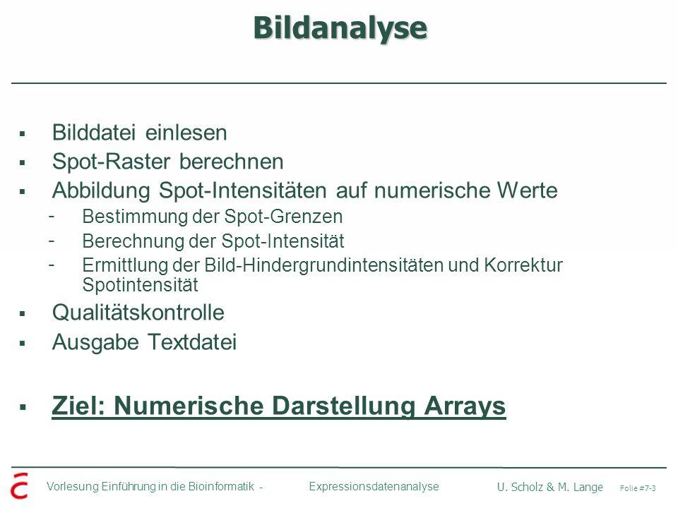 Bildanalyse Ziel: Numerische Darstellung Arrays Bilddatei einlesen