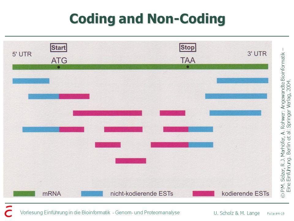Coding and Non-Coding © P.M. Selzer, R.J. Marhöfer, A.