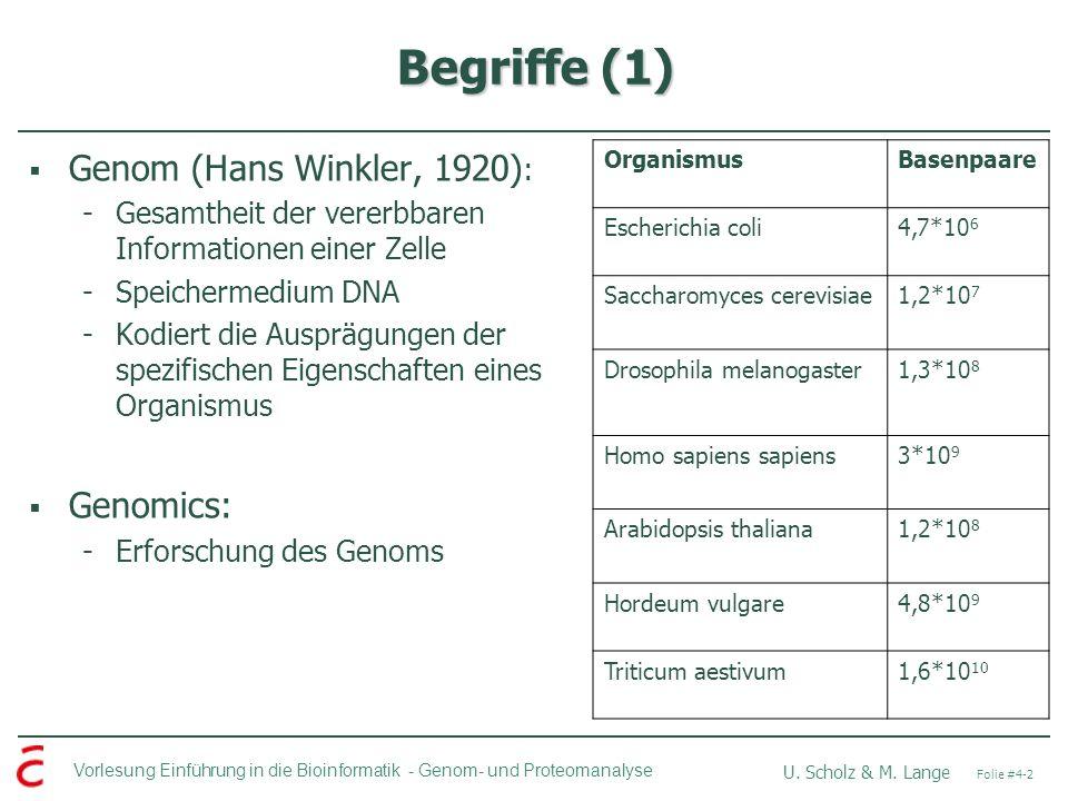 Begriffe (1) Genom (Hans Winkler, 1920): Genomics: