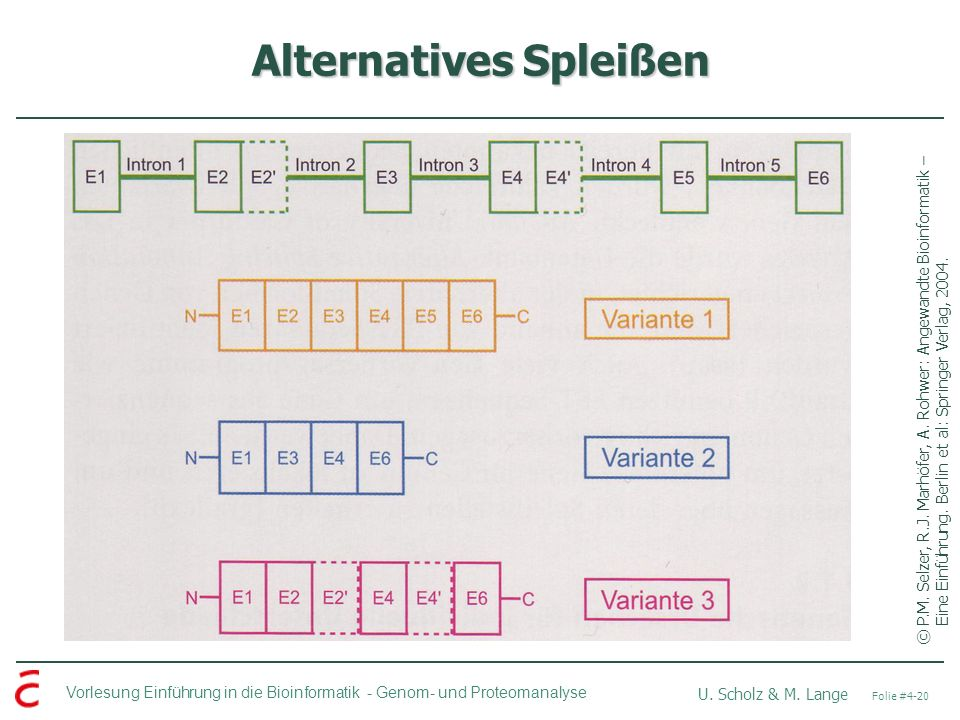 Alternatives Spleißen