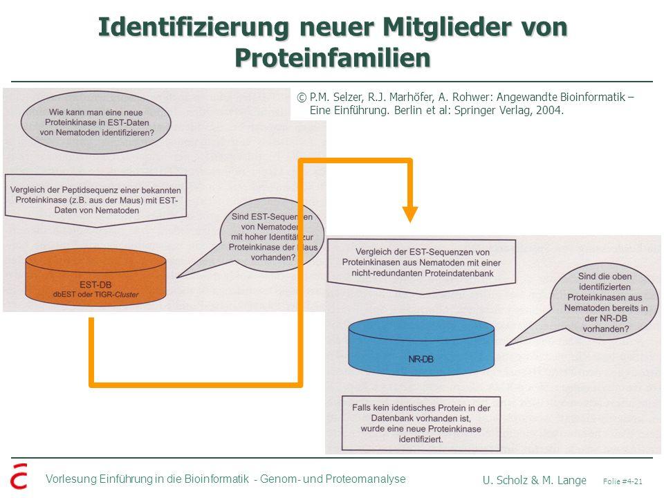 Identifizierung neuer Mitglieder von Proteinfamilien