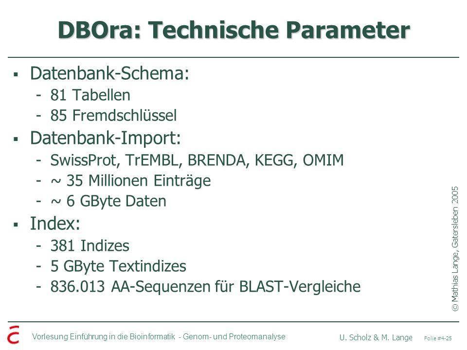 DBOra: Technische Parameter