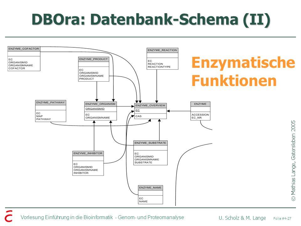 DBOra: Datenbank-Schema (II)