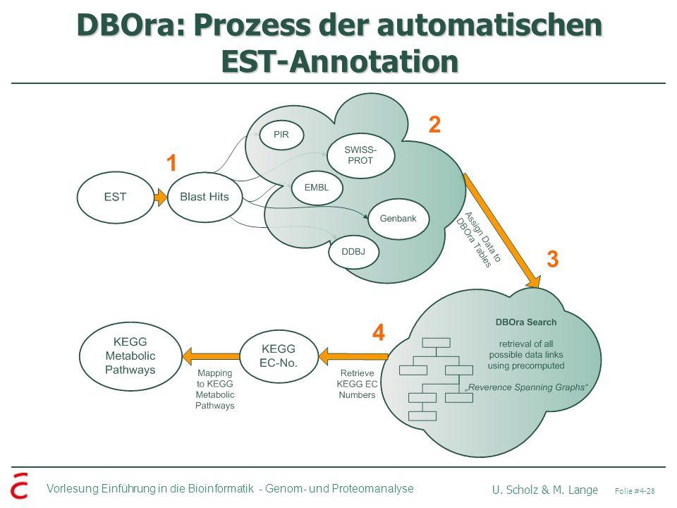 DBOra: Prozess der automatischen EST-Annotation